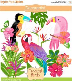 ON SALE Tropical birds Paradise clip art birds clipart