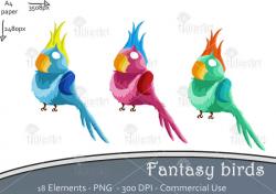 Colored birds, clipart, digital, bird, paradise, handmade, printable ...
