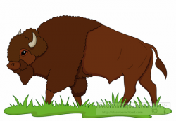 Animal Clipart - Buffalo Clipart - bison-on-praire-clipart-6125 ...