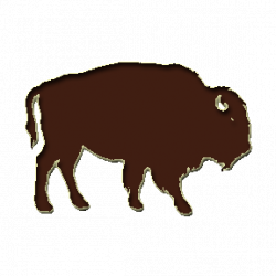 Buffalo Bison Crossing Clipart