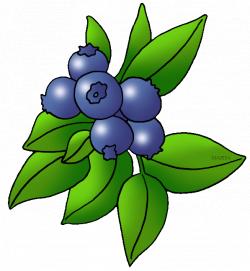 Fruit Clip Art by Phillip Martin, Blueberries