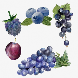 Ripe Grapes, Creative Fruit, Blueberry, Purple Grapes PNG Image and ...