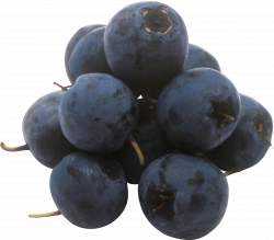 Blueberries PNG images free download