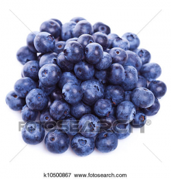 Free Blueberry Clipart pile, Download Free Clip Art on Owips.com