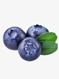 Three Blueberries, Delicious Blueberry, Pretty Blueberries ...
