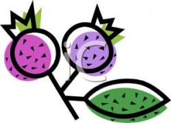Two Blueberries - Royalty Free Clipart Picture