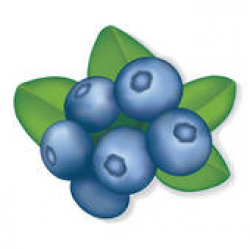 Blueberry Clip Art - Royalty Free - GoGraph