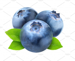 Three blueberries cut out - Food & Drink Photos | Creative Market Pro