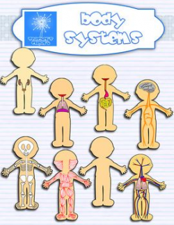 Human Body systems clipart BUNDLE {Science clip art} | Human body ...