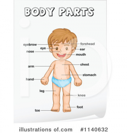 my body clipart 8 | Clipart Station