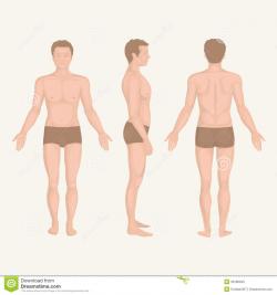 Man Body Clipart