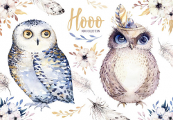 Hand Drawn watercolor owls,feather and flower. Nursery poster ...
