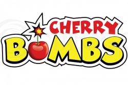 Fundraiser by Kevin M. Flynn : Cherry Bombs Softball Program
