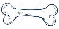 Bone Drawing at GetDrawings.com   Free for personal use Bone Drawing ...