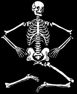 Skeleton bone clipart 1413105 - printingbrochures.info