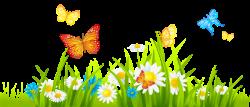 png - Buscar con Google | tarjetas | Pinterest | Grasses, Butterfly ...