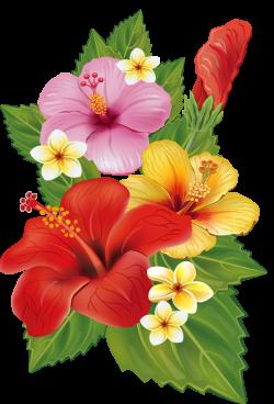7.png   Hawaiian, Flowers and Decoupage