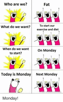 Who Are We? Fat What Do We Want?To Start Our Exercise and Diet When ...