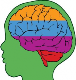 Images: Child-Brain-Development
