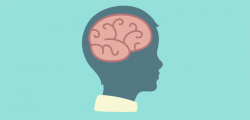 What Happens in a Child's Brain When They Learn to Empathize? - Mindful