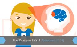 Brain Development, Part III: Adolescence (13-18) - TeenSafe