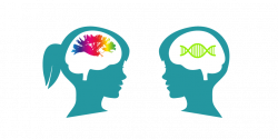 MRC Cognition and Brain Sciences Unit – Using cognitive theory and ...