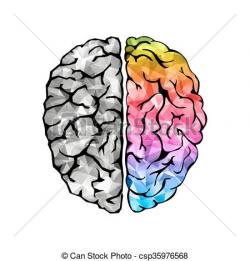 Human Brain Drawing at GetDrawings.com | Free for personal use Human ...