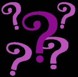 purple-question-mark-clip-art-ytkebkklc-png-1024x1014 - CharlotteFive