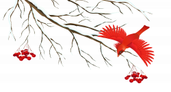 Winter Snowy Branch with Bird PNG Clipart Image | Gallery ...