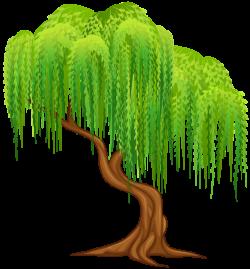 Willow Tree Transparent PNG Clip Art Image | Summer clip | Pinterest ...
