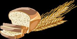 Whole wheat bread Brown bread Whole grain - Whole wheat bread 2614 ...