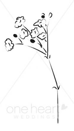 Baby Breath Clipart | Elegant Wedding Flower Sketches