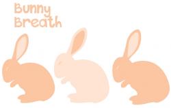 Bunny Breath - Momentous Institute