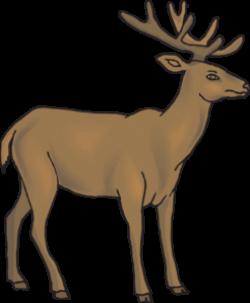 Cute deer clipart free clipart images 3 - Clipartix