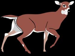 Cute deer line art free clip art image 2 3 - Cliparting.com