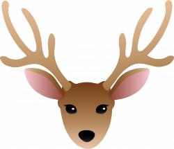 Simple clipart deer - Pencil and in color simple clipart deer
