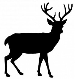 Wildlife Silhouette Clip Art at GetDrawings.com | Free for personal ...