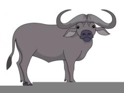 Cape Buffalo Clipart   Free Images at Clker.com - vector clip art ...