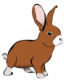 Cute Bunny Clipart - Clipart Kid | Bunnies | Pinterest | Clip art ...