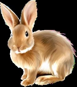 Baby Bunny Clip Art | FunMozar – Bunny Cliparts | Down On The Farm ...