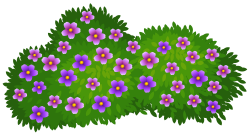 Green Bush with Flowers Transparent PNG Clip Art Image | Gallery ...