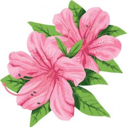 150 best Clip-Art images on Pinterest | Clip art, Flower clipart and ...