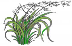 support flax colour – Education Aotearoa