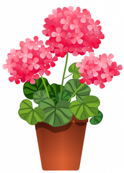5.png | Potted flowers, Flowers and Clip art