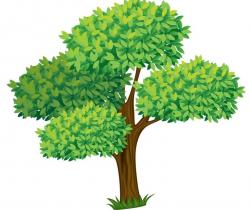 196 best Tree ต้นไม้ images on Pinterest | Clip art, Illustrations ...