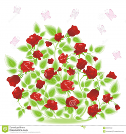 Chic And Creative Bush Clipart Plant - cilpart