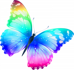 Free Pictures Of Butterflies - ClipArt Best | Butterflies ...