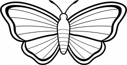 Free Butterflies Black And White Outline, Download Free Clip Art ...