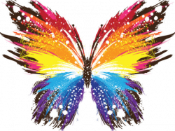 Rainbow Butterfly Clipart - Free Clipart on Dumielauxepices.net