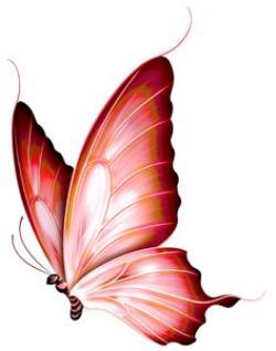 butterfly 1 by kayne-stock on deviantART | Butterflies | Pinterest ...